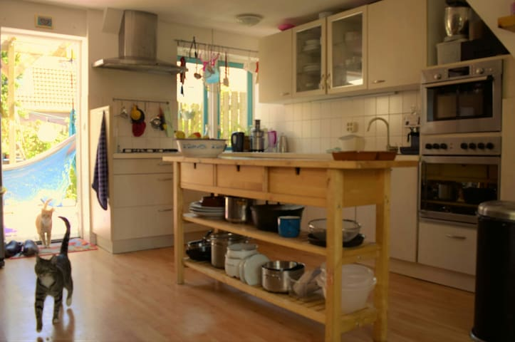 Open kitchen with everything you might need