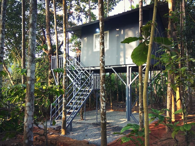 Kabani Riverside Cottage