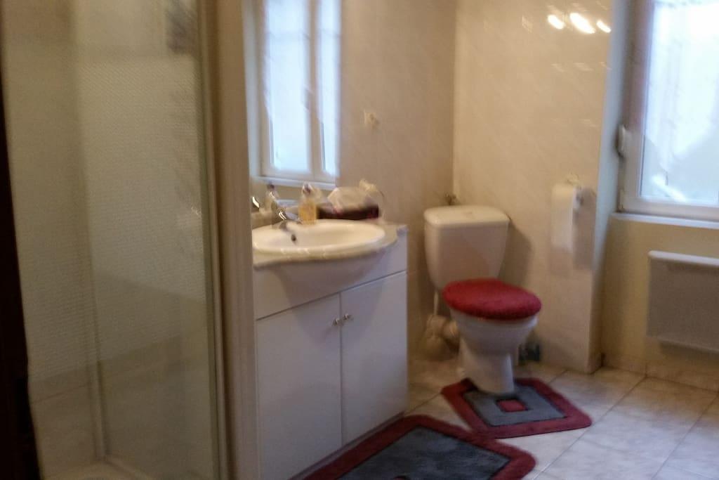 salle de bain agréable de 9m2
