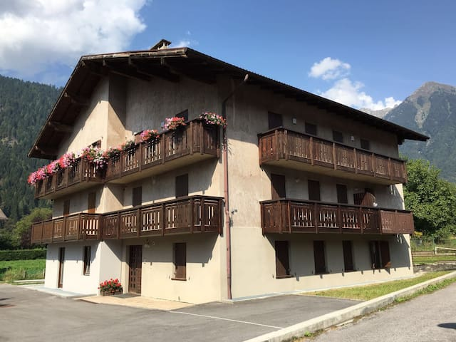 Pinzolo max 9 beds, parking and bicycles - Pinzolo - Apartment