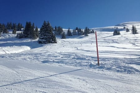Best Place near SchattbergXpress! - 萨尔巴赫 (Saalbach) - 公寓