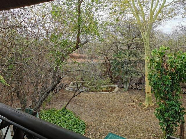 Leopard - Smart double en-suite, gorgeous gardens!
