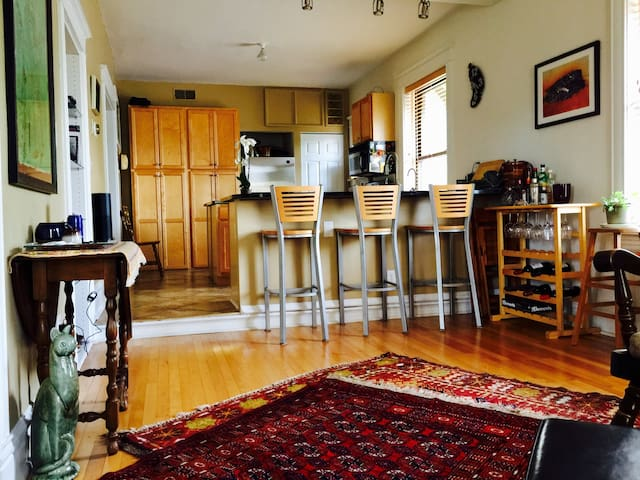 Stylish Condo near WashU, Forest Park, and Loop - St. Louis - Apartment