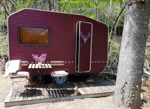 Vintage caravan,  Cevennes nature