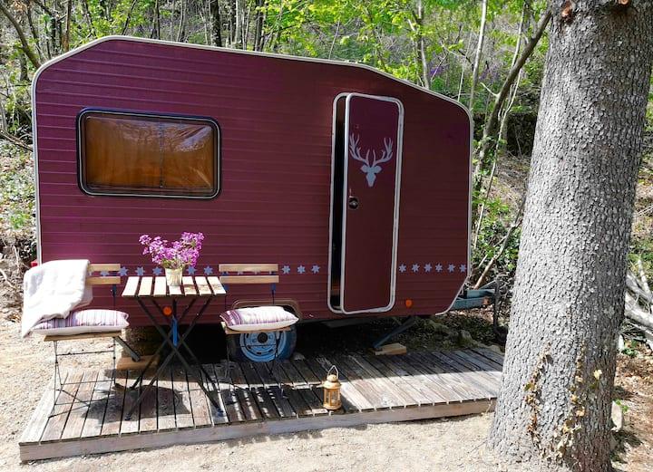 Vintage caravan, Parc National des Cevennes