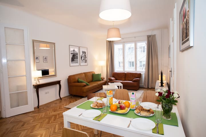 Fully renovated apartment in the city center