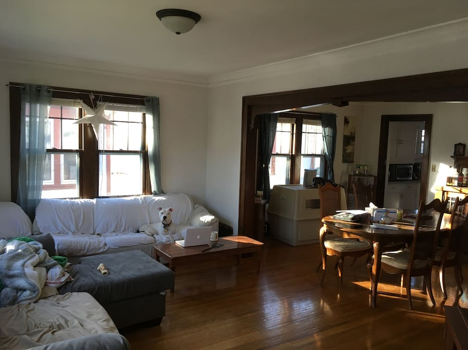 Large living and dining room combo. 2 full sized couches, 1 pulls out into full sized bed.