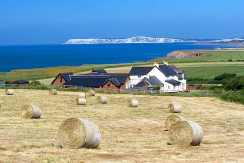 Chale Bay Farm - St Catherine's View