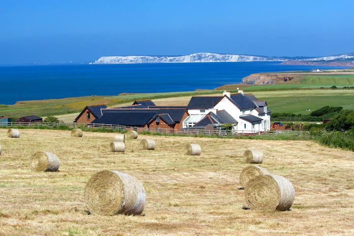 Chale Bay Farm - St Catherine's View