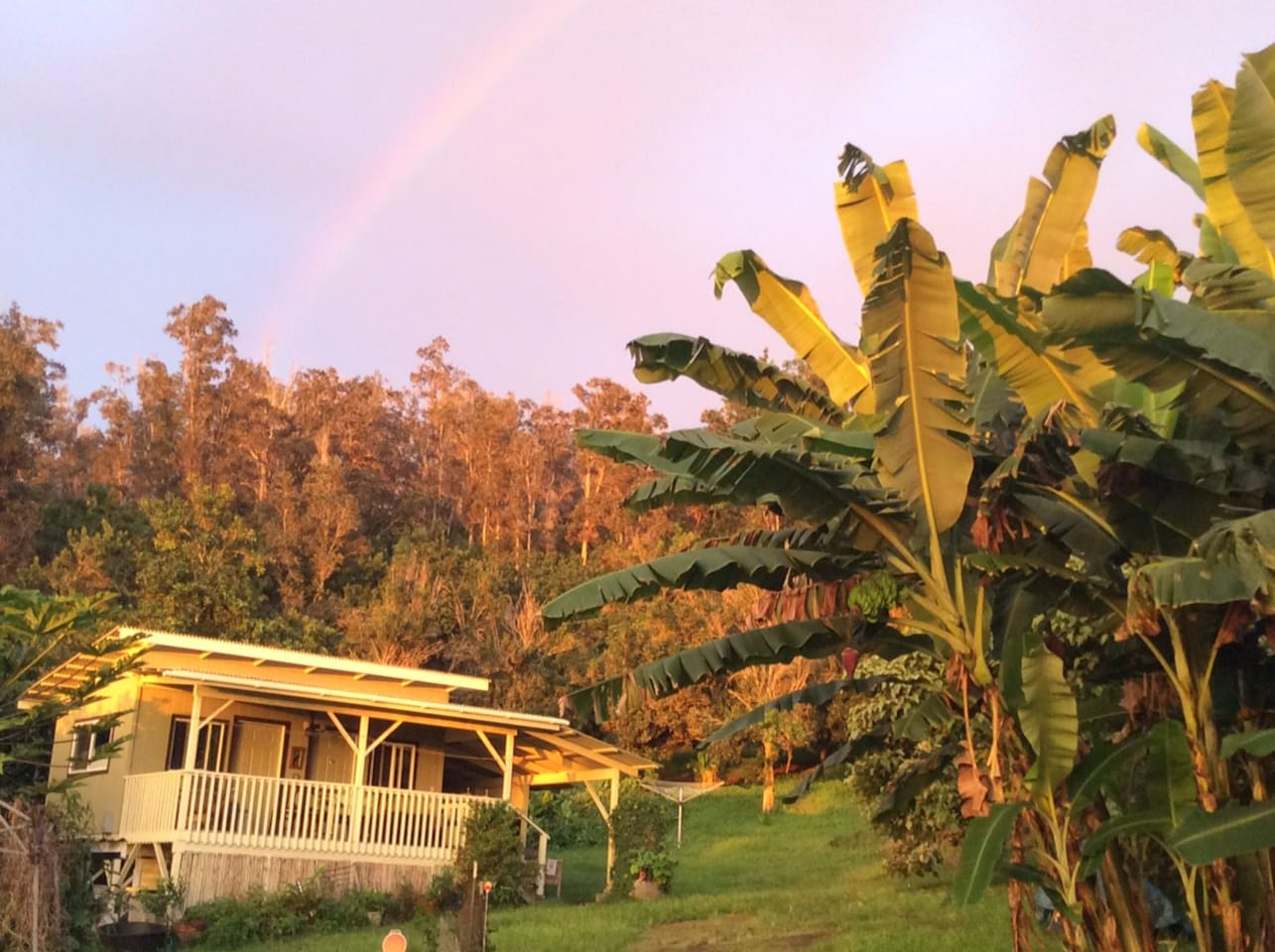 eco-cottage with the rainbow!