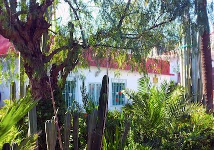La palmeraie hostel - Bed & Breakfast