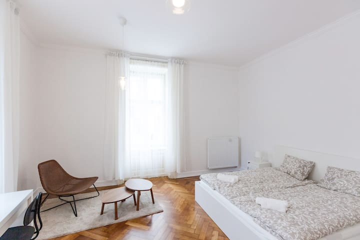 Large Room in Refurbished Historic Apartment