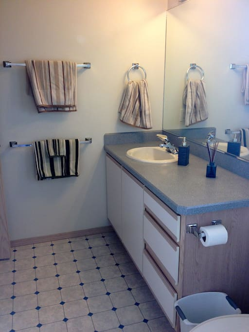 Private bathroom with super soft towels.