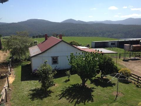Pine hill cottage