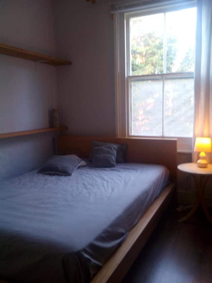 Cosy Room in the Heart of Kingston