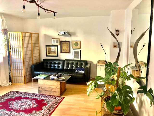 Cosy flat in the heart of lively Schwabing