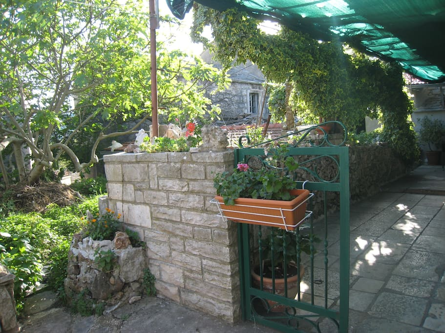 entrence to the accomodation and view on the garden
