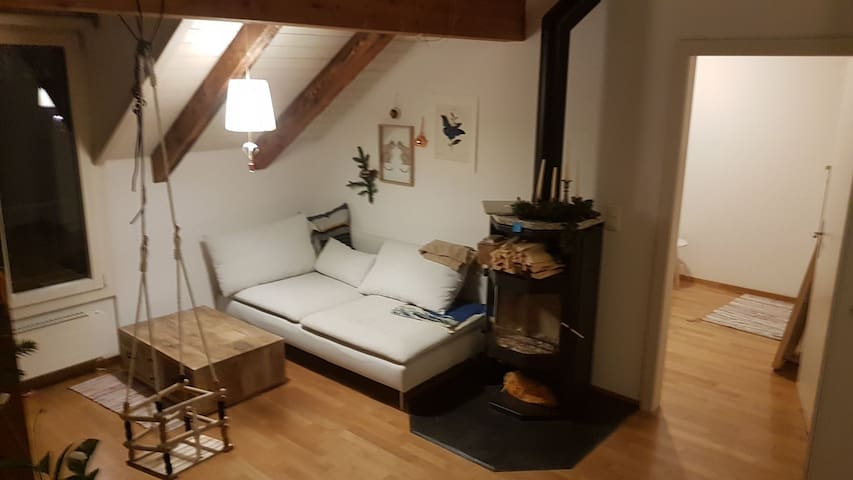 Nice room with fireplace in Zurich centre