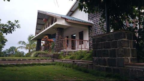 Jungle Lodge : Villa
