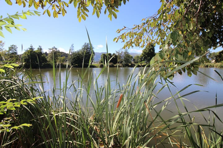 Lakeside Herons Nest