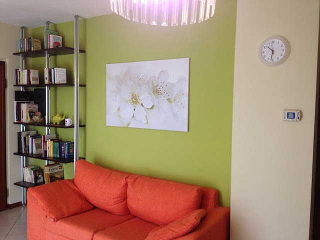 Ampio bilocale con box - Piacenza - Apartament