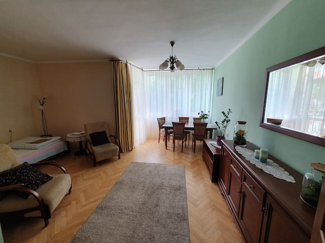 Spacious room with balcony in Oświęcim