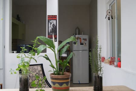 Great room located in Condesa