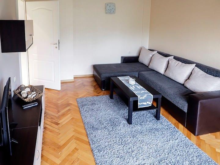 Sheynovo apartment with private bathroom