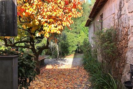 Casa da Floresta Country House - Póvoa de Lanhoso