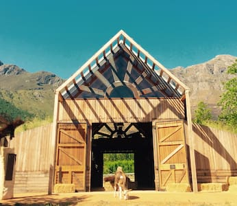Inspiring Animal Sanctuary & Famous Painting Pig - Franschhoek