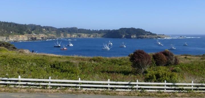 Circa Ocean View Suite