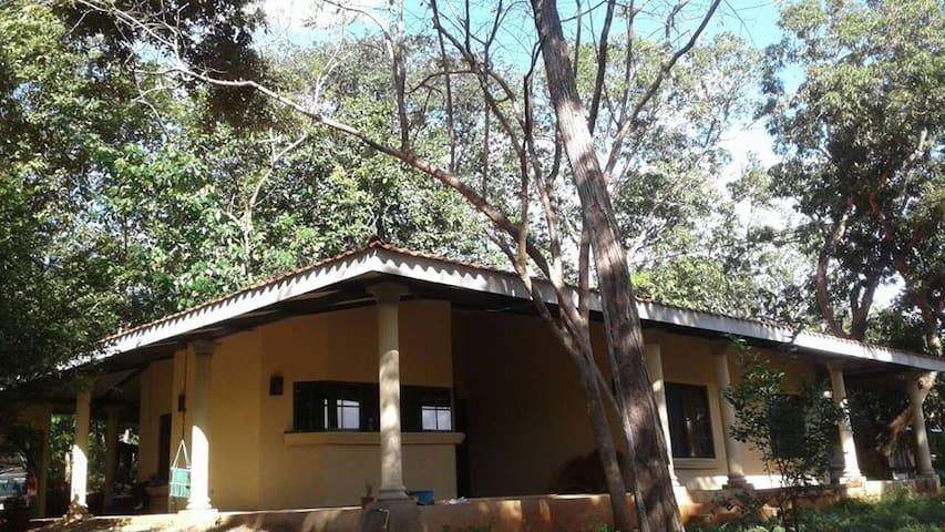 Casa Matapalo Santa Cruz, Guanacast