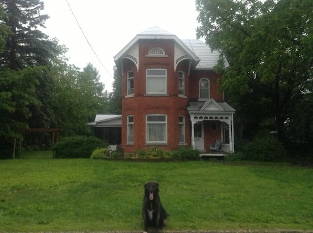 Victorian Home/One bedroom/Oldtowne - Kemptville - Talo