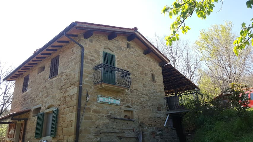 Sustainable House B - Via dei Ciliegi
