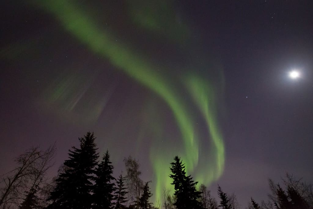 This was taken directly above our home! It's common for us to be able to enjoy the splendor of the Northern lights throughout the winter months, right in our back yard.