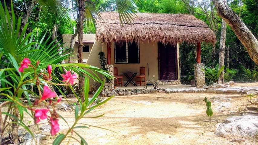 """Jungle Casita"""