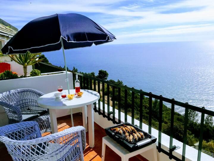 Superb Sea view 1 mn  centre & beach, 35km Lisbon