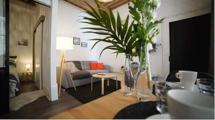 Appartement Cosy vu sur le jardin du Nançon