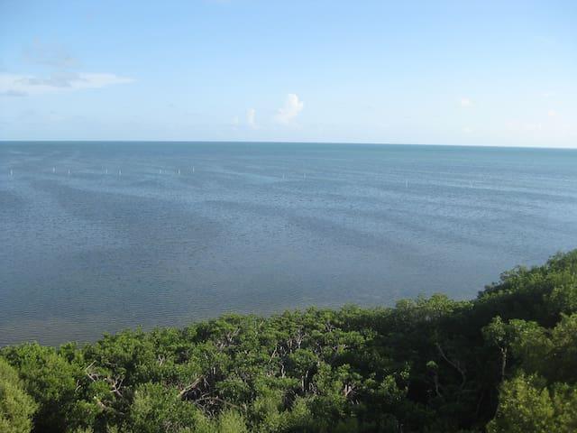 Beautiful Oceanfront Condo in Islamorada, FL