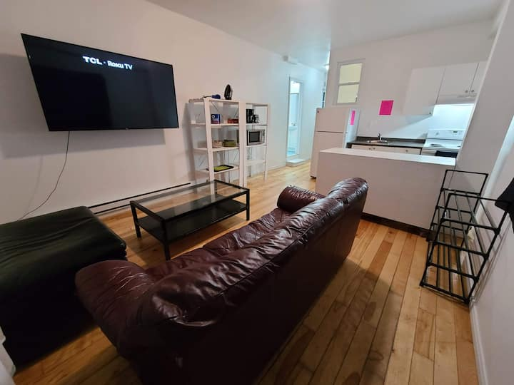 297 Pet Friendly / Netflix + 65inch TV /  Room C
