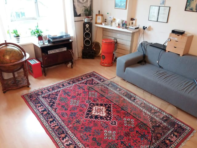 Big, cosy apartment close to the city centre - Utrecht - Appartement