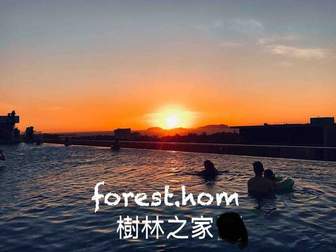 NEW: Welcome to our forest.hom,  신규 :  사랑의 숲 집