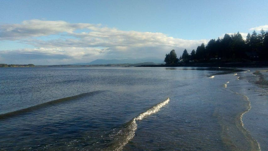 2 Cozy Bedrooms by beaches on Protection Island - Nanaimo - Hus