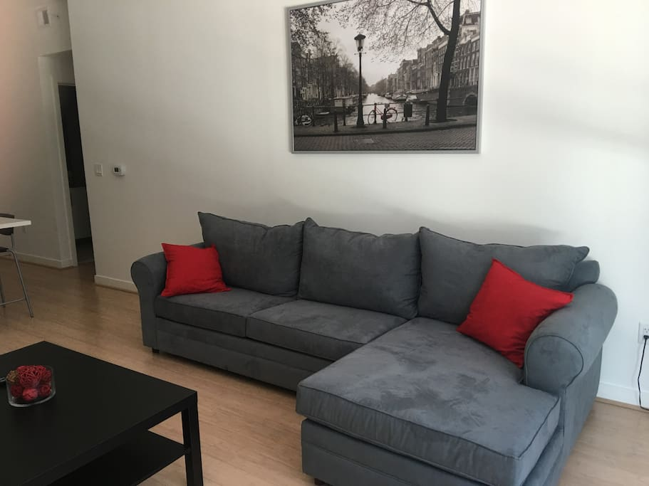 1 Bedroom Suite In Downtown DC Apartments For Rent In Washington District