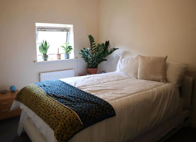 Beautiful room in De Beauvoir Town, East London.
