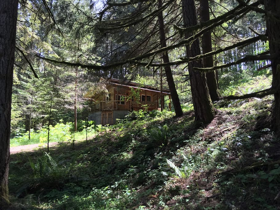 The upper cabin rustic romantic private cabanes for Romantic cabins oregon