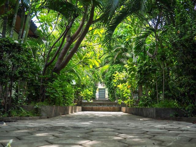 Scuba Tribe Bali Tulamben Room 7 (2 persons)