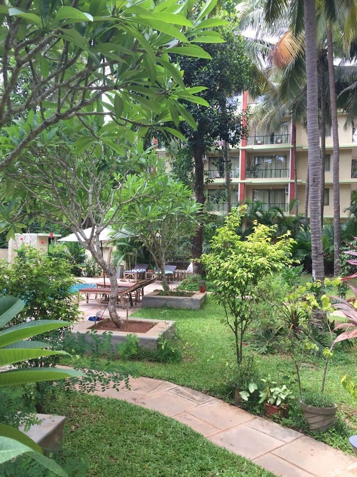 1BHK Appartment in Palolem with pool view