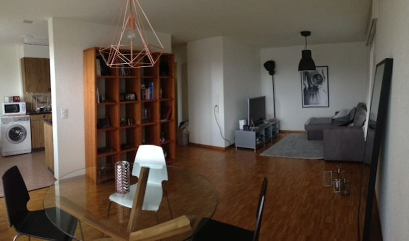 Charming appartement in the center of Biel - Biel/Bienne - Apartamento