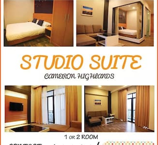Cameron Holiday Studio Suite - Apartment